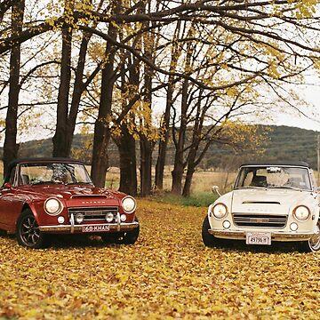 Datsun Sports 2000 Fairlady Autumn Leaves by khanzie