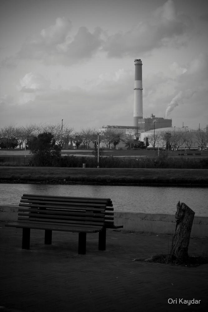 Pollution by Ori Kaydar
