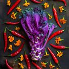 Still life with purple kale, thai peppers and geraniums by alan shapiro