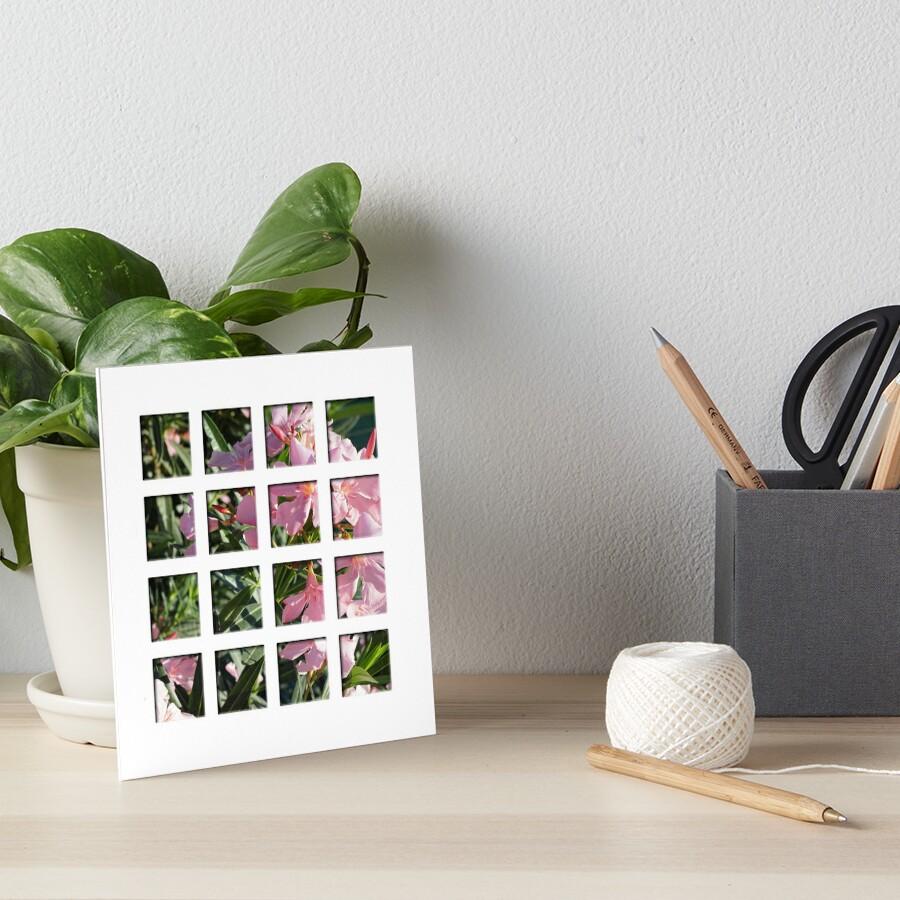 Oleander Galeriedruck