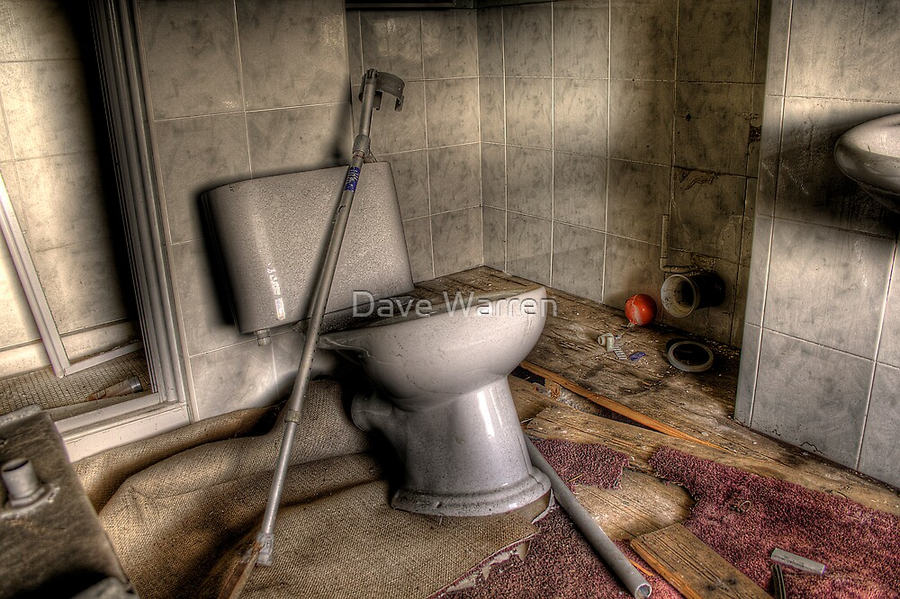 Disabled Toilet by Dave Warren