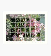 Oleander 2 Art Print