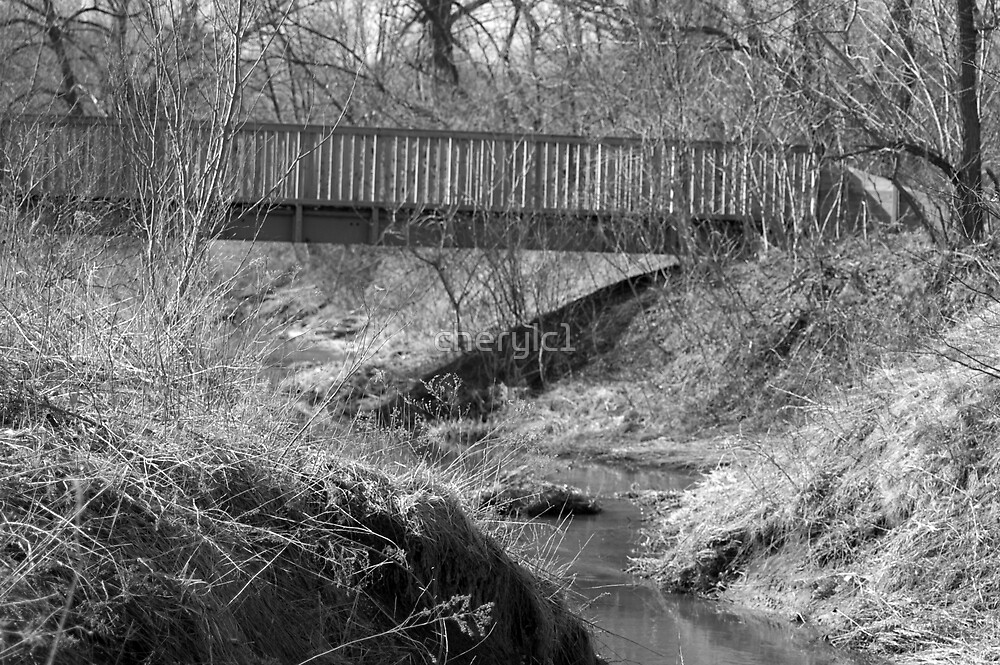 The Bridge by cherylc1