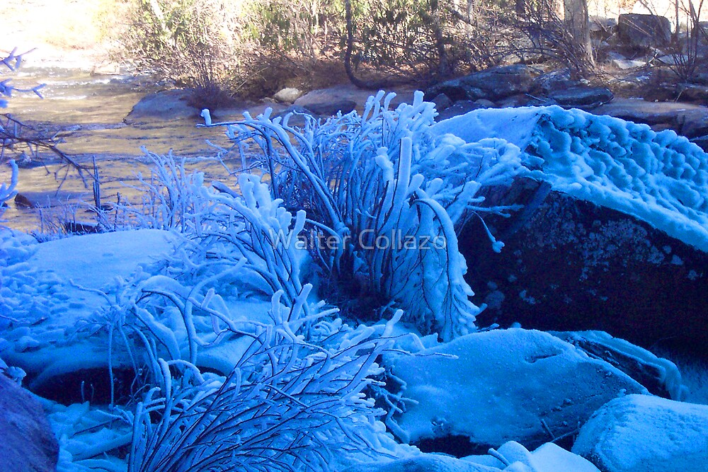 Blue Ice by Walter Collazo