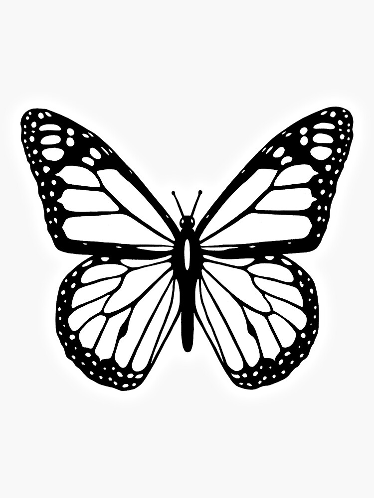 Butterfly, Black and White Butterfly. by TOMSREDBUBBLE