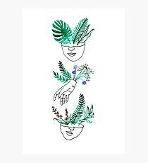 Flora und Fauna Fotodruck