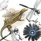lizard with dragonfly by jackpoint23