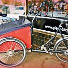 Carrier 3 wheel Cycle outside Bicycle Shop by EdsMum