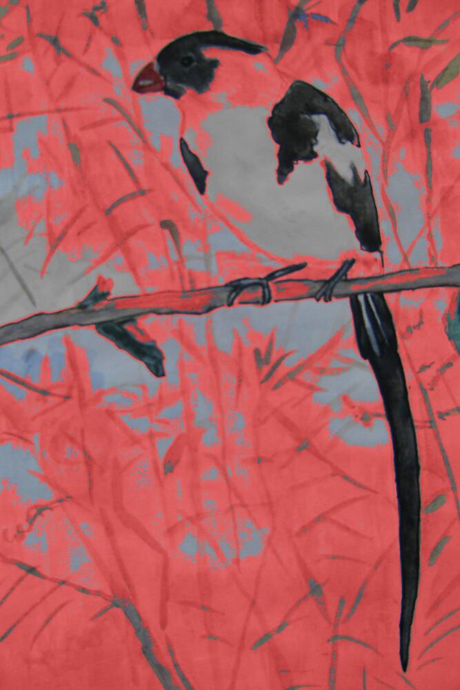 birds in my garden 2 by margaretfraser