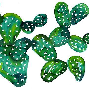 jade cacti by amyoharris