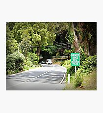 Highway from Melbourne to Sassafras, Vic. Australia Photographic Print