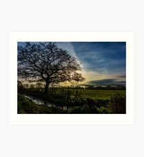 Morning Light in the Towy Valley, Wales Art Print