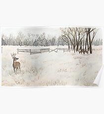Snowy Deer Scene Poster