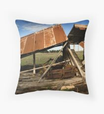 shed Throw Pillow