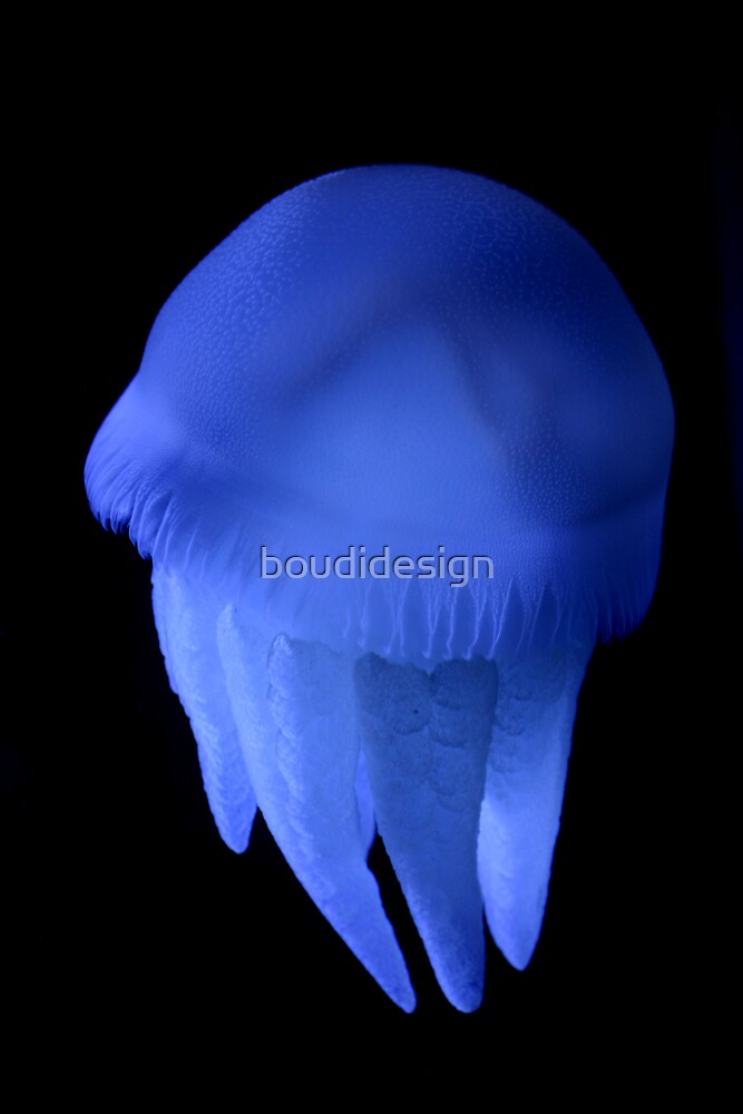 Neon jelly by boudidesign