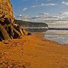 Beachy by Nicole Pearce