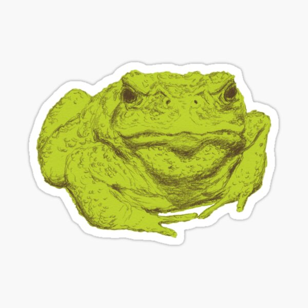 A Toad Named Ali Sticker