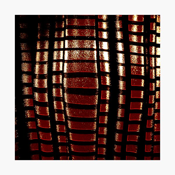 red cage for steven Photographic Print