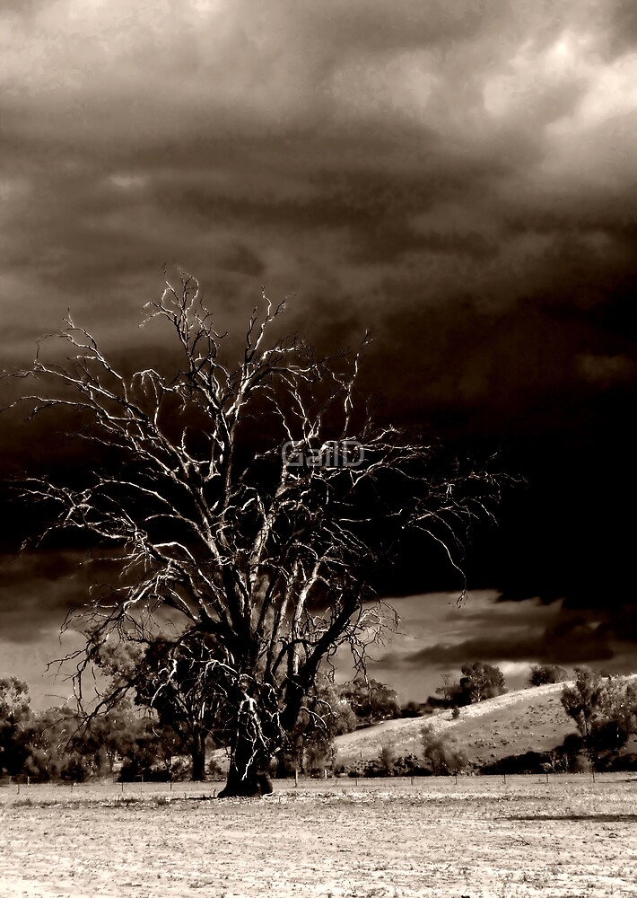 Dark & Stormy Night by GailD