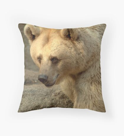 Syrian Brown Bear  V Throw Pillow