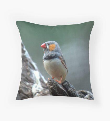 Male Zebra Finch Throw Pillow