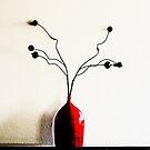 Rote Vase von Evita