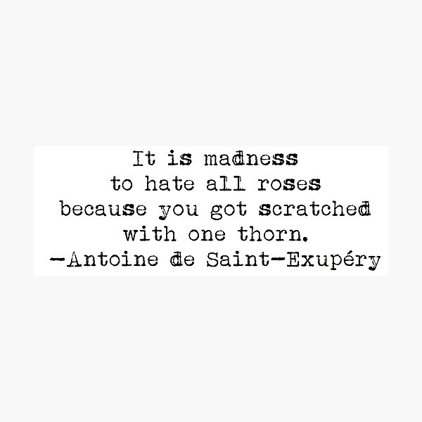 """""""Es una locura odiar todas las rosas porque te arañaron con una espina"""". -Antoine de Saint-Exupéry Lámina fotográfica"""
