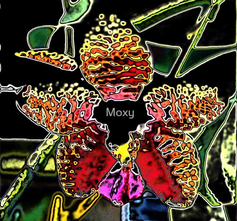 Funky Flower by Moxy