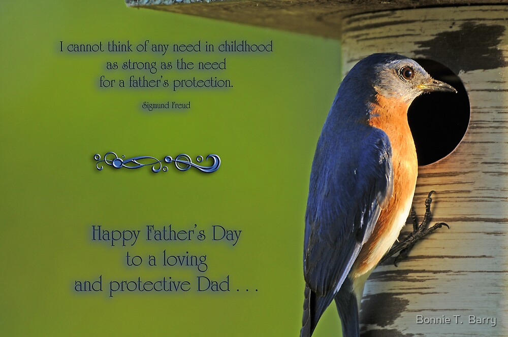 A Father's Protection by Bonnie T.  Barry