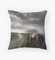 diffuse gold Throw Pillow