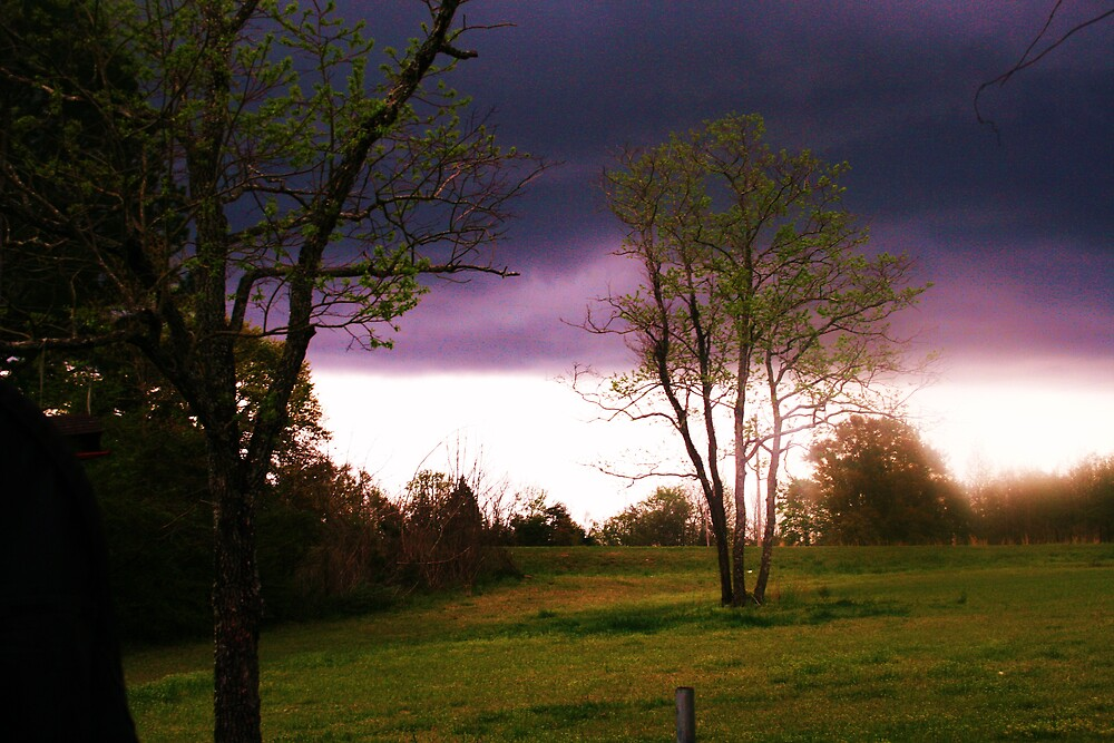 3/07/2008 BEFORE THE STORM by mel1forjon