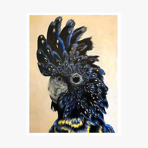 Black Cockatoo Portrait Photographic Print