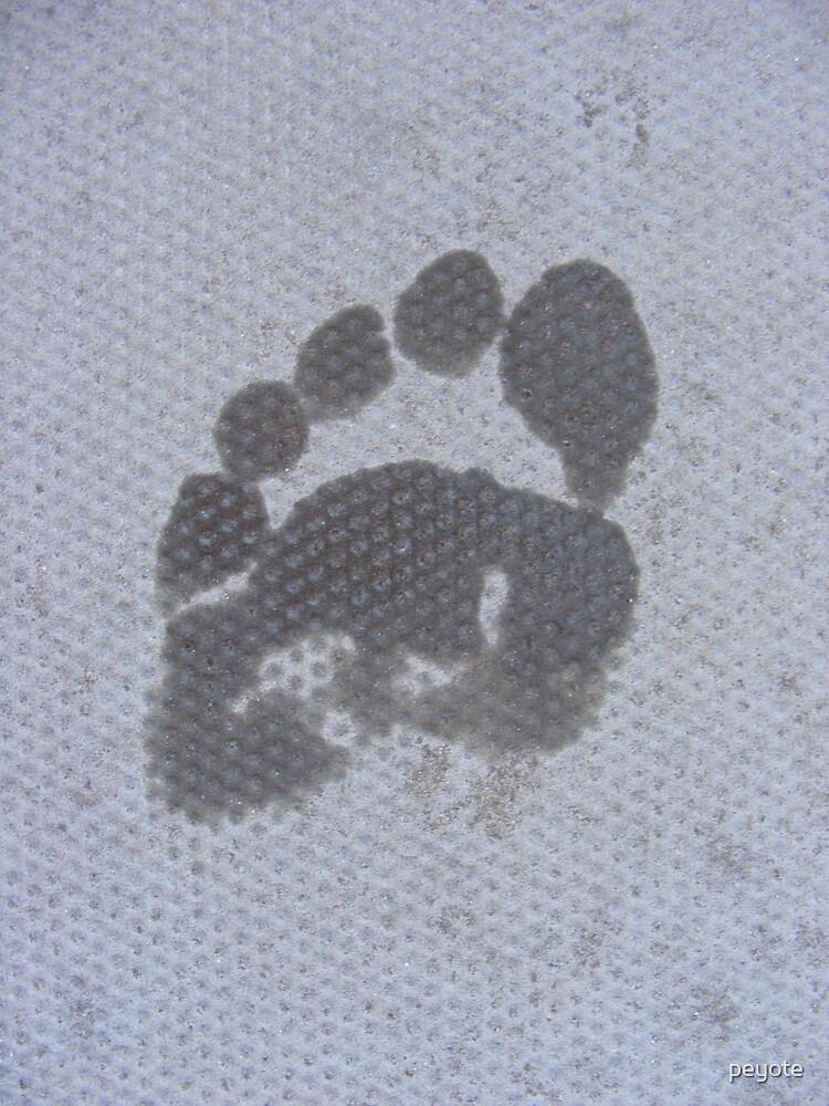 Foot Print by peyote