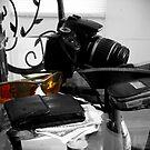 PHOTOG'S DAYS END by John Davis