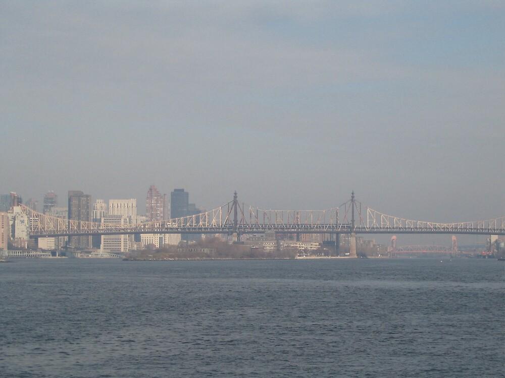 New York Bridges by Irene Clarke