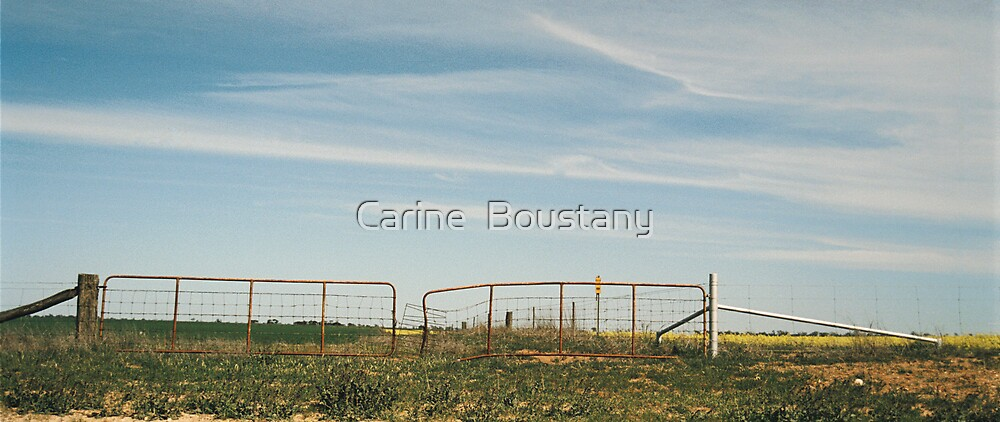 Gate by Carine  Boustany