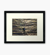 Skinny Dipping Framed Print
