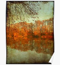 Autumn colours on water Poster
