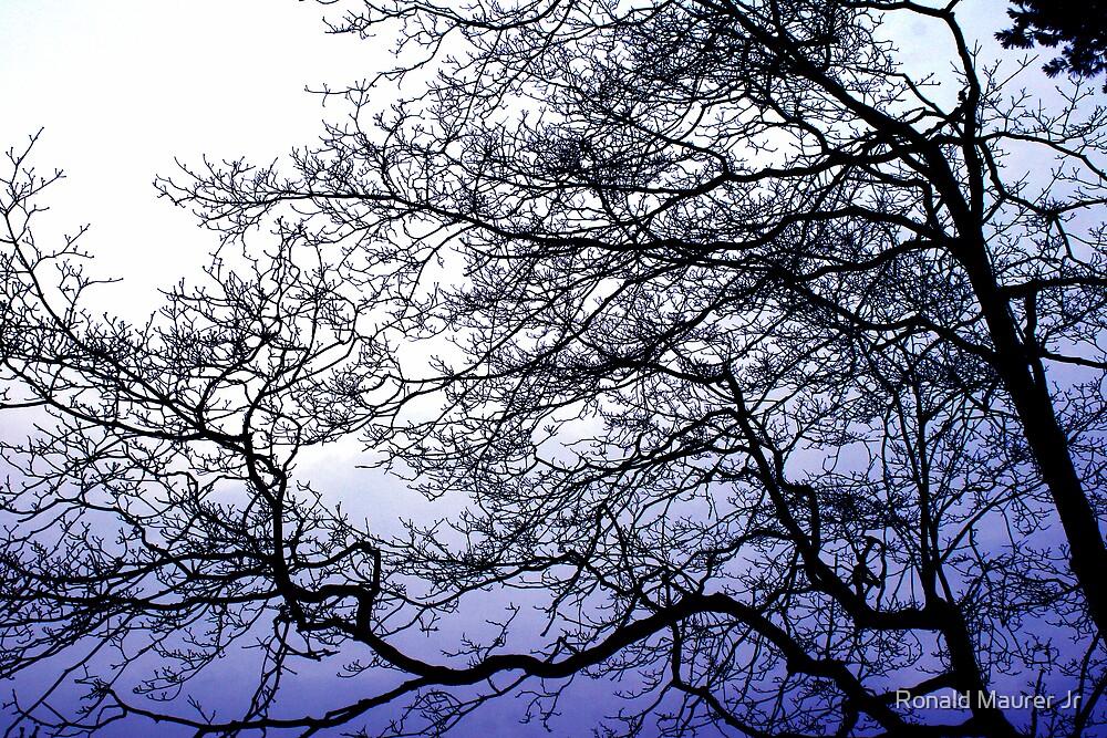 Setting Blue by Veronica Maur'er