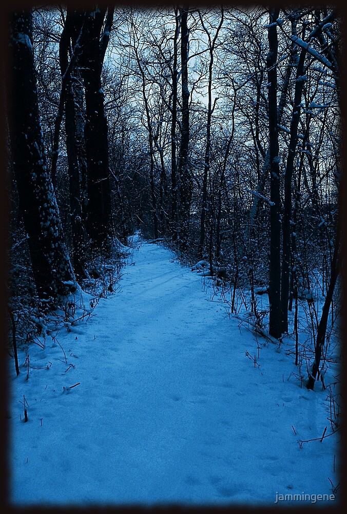 Walkin' down a winter path..In a world of blue by jammingene