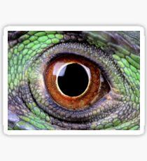 Iguana Eye Sticker