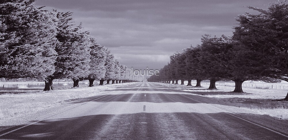 Road to Mortlake by louise