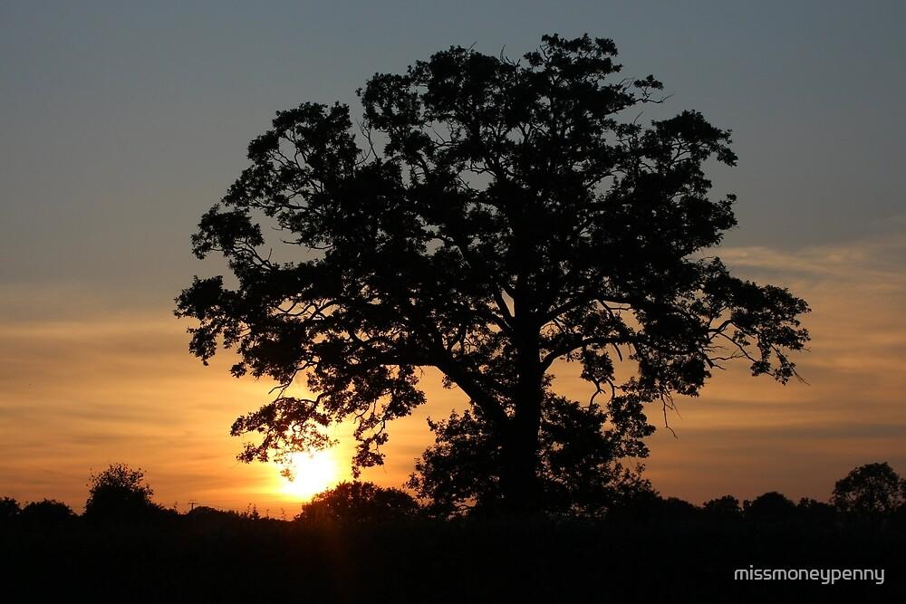 Broad Oak sunset  by missmoneypenny
