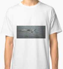 Escape 1. Male mallard ducks fighting Classic T-Shirt