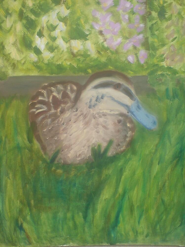Duck sitting in a garden by kdesignz