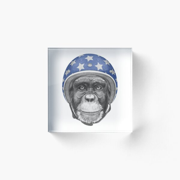 Monkey Acrylic Block