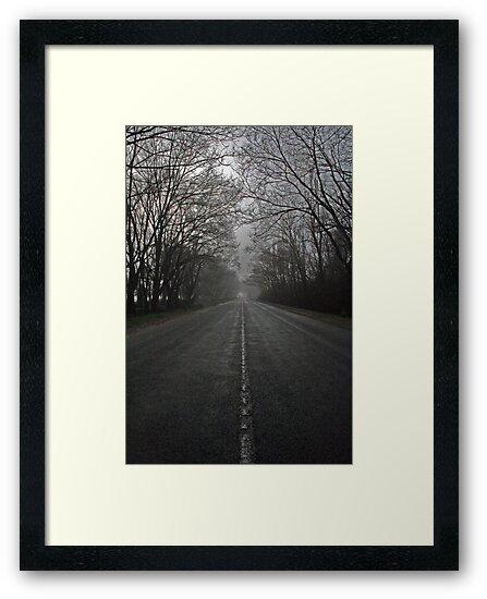 Road Ahead by Steve Chapple