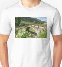 Of Mountain Streams and Olden Bridges Unisex T-Shirt