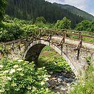 Of Mountain Streams and Olden Bridges by Georgia Mizuleva