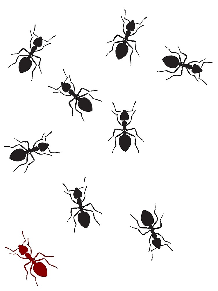 ANTS! by newbs